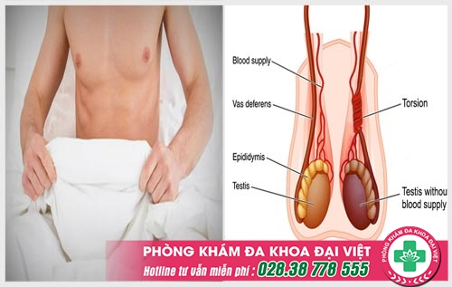 Đau vùng mu nam giới là dấu hiệu bệnh gì và cách chữa trị hiệu quả